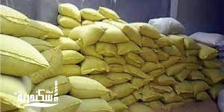 التحفظ على 4.5 أطنان أعلاف غير صالحة للاستخدام الحيواني في الإسكندرية