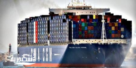 ميناء الإسكندرية تُقرر استمرار شركات التوكيلات الملاحية في تطهير السفن القادمة إليها