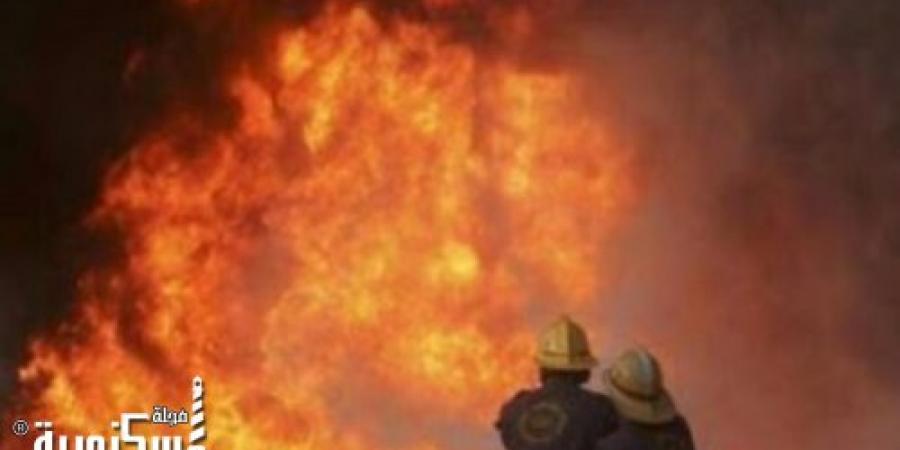 الحماية المدنية بالإسكندرية تسيطر على حريق نشب في مخزن زيت بقرية مصطفى إسماعيل