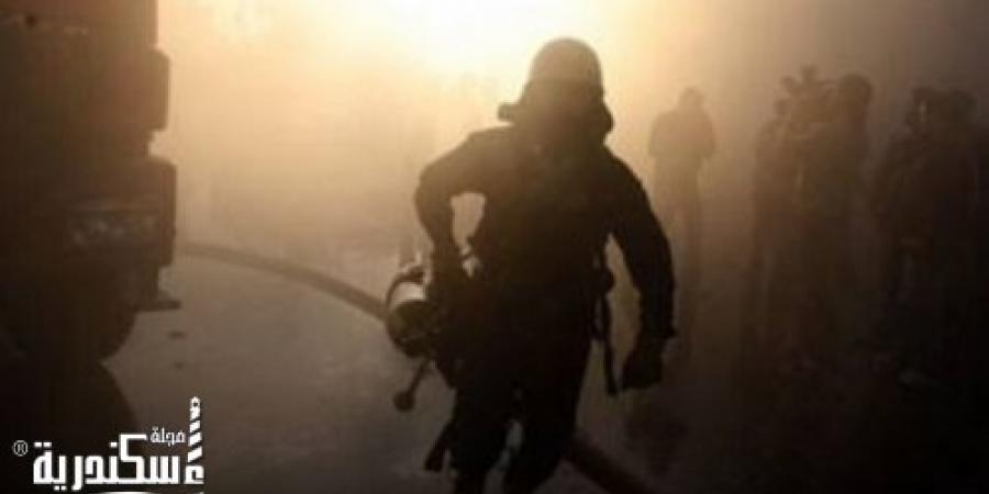 الحماية المدنية بالإسكندرية تسيطر على حريق إندلع بمنحل عسل بقرية فلسطين
