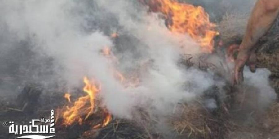الحماية المدنية بالإسكندرية تسيطر على حريق داخل قطعة أرض فضاء بشارع النقل والهندسة