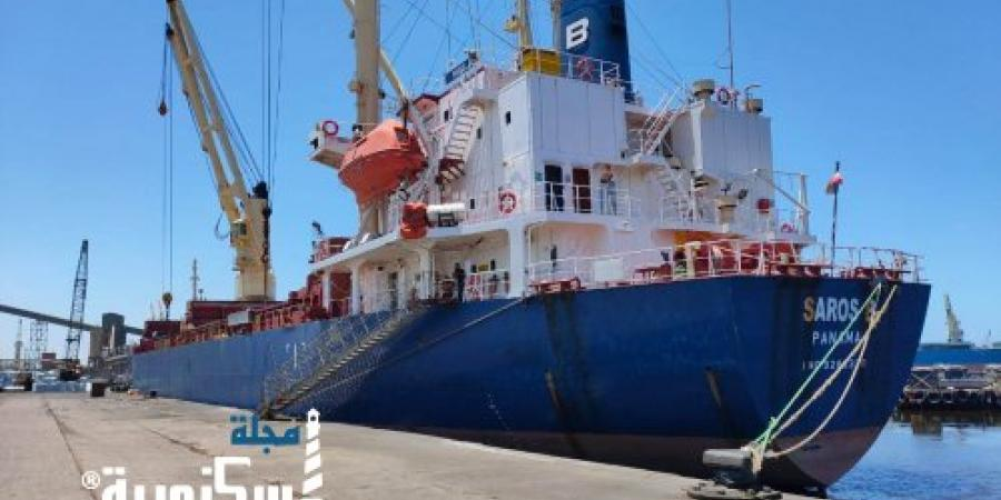 ميناء الاسكندرية يشهد نشاطاً في حركة التداول وسط إجراءات احترازية مشددة لمواجهة كورونا