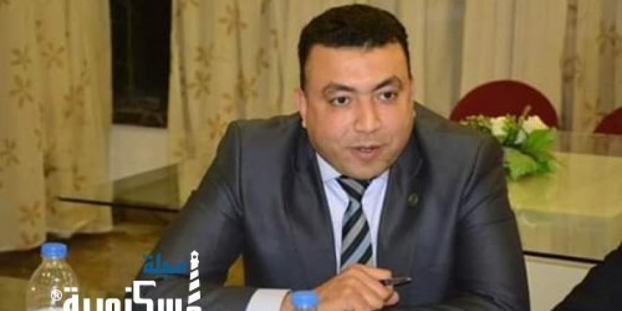 عضو نقابة مهندسين الإسكندرية النماذج المميكنة آليه جديدة لحماية مزاولة المهنة
